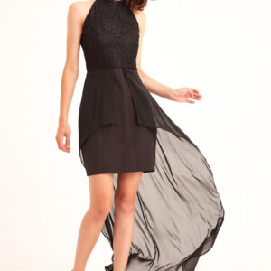 Women's Long Back Black Evening Dress